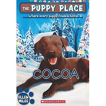 Cacao (Puppy plaats