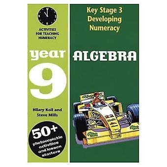 Developing Key Stage 3 Numeracy: Algebra Year 9 (Developings)