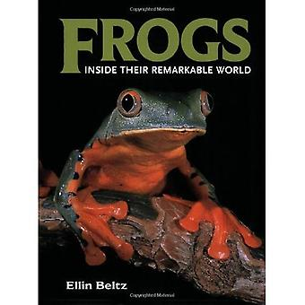 Frogs: Inside Their Remarkable World