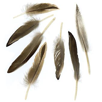 Duck Cosse Feathers .05oz-Natural B253