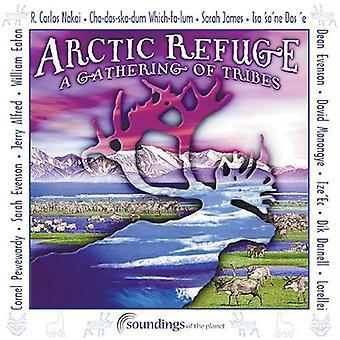 Arctic tilflugt-indsamling - Arctic tilflugt-indsamling af [CD] USA importen
