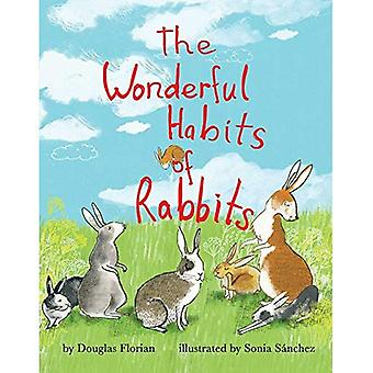 The Wonderful Habits of Rabbits (Mini Bee Board Books) [Board book]