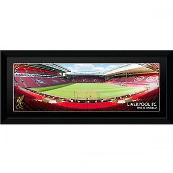 Liverpool Picture Anfield 30 x 12