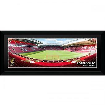 Liverpool Anfield Bild 30 x 12