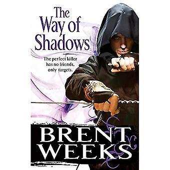 Den Weg der Schatten: Der Engel der Nacht-Trilogie: Buch 1