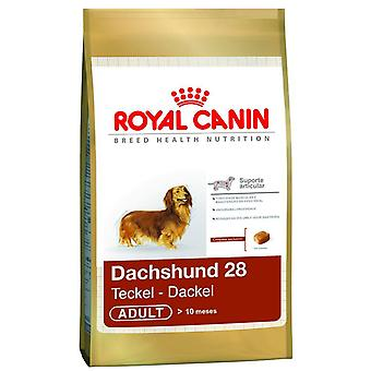 Royal Canin Dachshund seca alimentos para perros