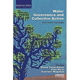 Acción colectiva y gobernabilidad del agua: retos de varias escalas