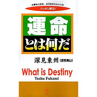 What is Destiny by Fukami & Toshu