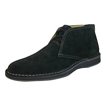 Sperry Gold Cup Norfolk Chukka ASV Mens Suede Boots / Shoes - Brown