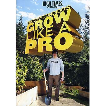 High Times præsenterer Nico Escondido vokse som et P [DVD] USA importerer