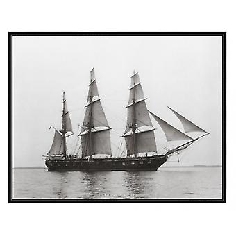 USS Constellation 1892 Poster Print (20 x 16)