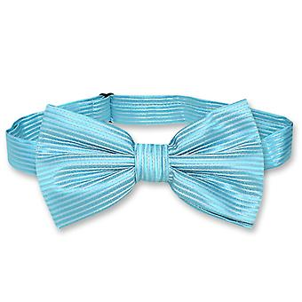 Vesuvio Napoli BOWTie Horizontal Stripe Design Men's Bow Tie