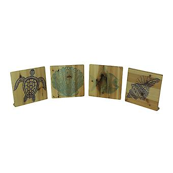 Set of 4 Wood Turtle Fish and Shell Blocks