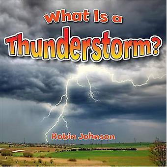 What Is a Thunderstorm? by Johnson - Robin - 9780778724377 Book