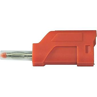 Straight blade plug Plug, straight Pin diameter: 4 mm Red SCI R8-104 R 1 pc(s)