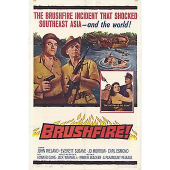 Brushfire filmaffisch (11 x 17)