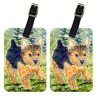 Carolines Treasures  SS8907BT Pair of 2 Norwich Terrier Luggage Tags