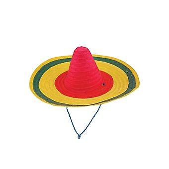 Giant Sombrero Hat