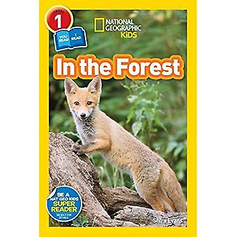 National Geographic Leser: Im Wald (National Geographic Leser: Stufe 1)