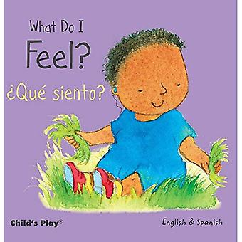 What Do I Feel? / ?Qu siento? (Small Senses Bilingual)