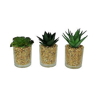 Piante succulente artificiali in vetro Fioriera giardino della ghiaia in vaso Mini Set di 3