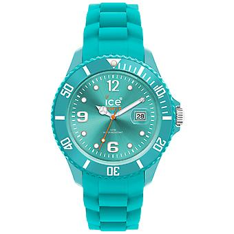 Ice forever watch for Unisex Analog Quartz with Silicone FiSi.TE bracelet. U.S.13