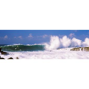 Breaking waves on the coast Hawaii USA Poster Print