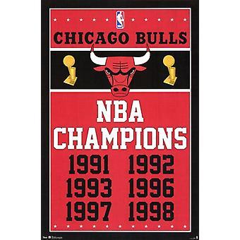 Chicago Bulls - Champions 2013 affiche Poster Print