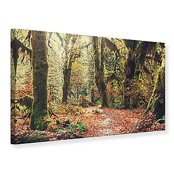 Canvas Print Fairies Forest