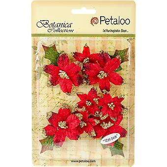 Botanica Regal Gold Poinsettia 12/Pkg-Red