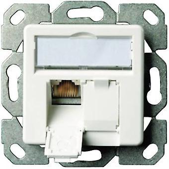 Red salida al ras montaje insertar con blanco alpino de Telegärtner de 2 puertos de panel principal CAT 6A