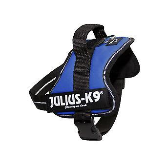 Julius K9 Powerharness Baby Blue