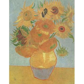 Jarrón con doce girasoles, Vincent Van Gogh, 40x50cm