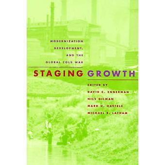Tijdelijke groei - modernisering - ontwikkeling en de wereldwijde koude oorlog-b