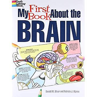 Mein erstes Buch über das Gehirn