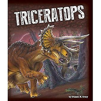 Triceratops (Exploring Dinosaurs)
