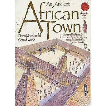 African Town (Spectacular Visual Guides)