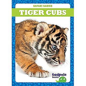 Tiger Cubs (Safari Babies)