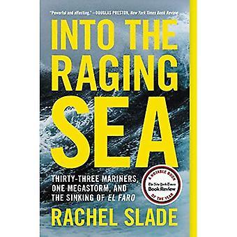 In de woeste zee: drieëndertig Mariners, een Megastorm en het zinken van El Faro