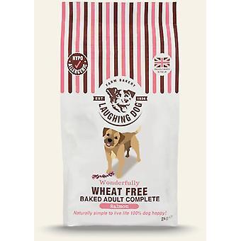 Griner hund hvede gratis komplet laks voksen 12kg