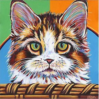 Kitten in Basket II Poster Print by Carolee Vitaletti (13 x 19)