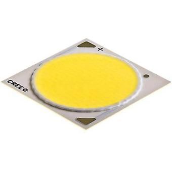 HighPower LED Cold white 100 W 5408 lm 115 °