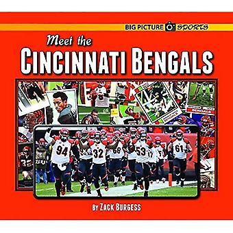 Meet the Cincinnati Bengals (Big Picture Sports)
