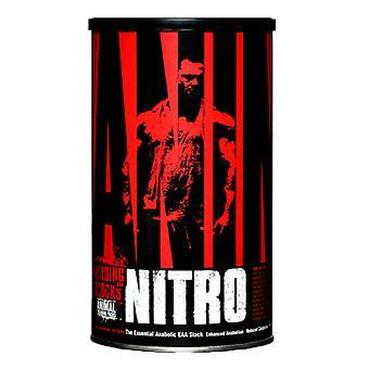 Blocs de construction de Nitro d'animal