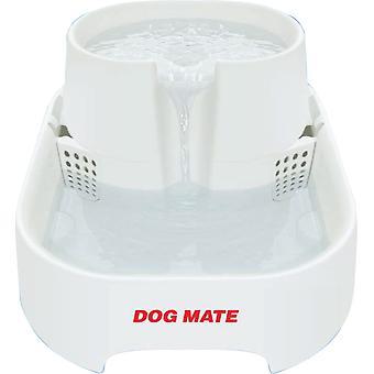 Hund vand drikkefontæne store