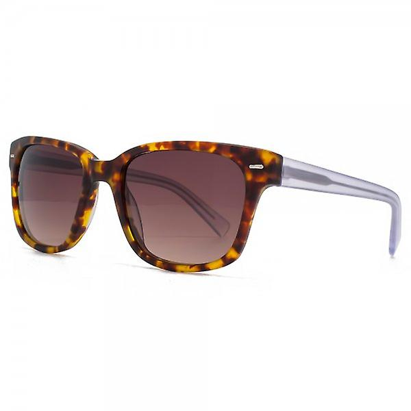French Connection Premium Retro Rectangle Sunglasses In Matte Tortoiseshell