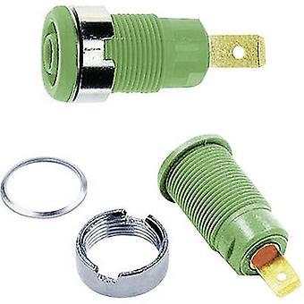 Safety jack socket Socket, build-in Green Stäubli