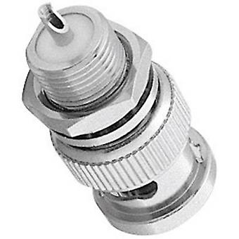 BNC connector Plug, vertical mount 50 Ω Amphenol B1351Q1-ND3G-50 1 pc(s)
