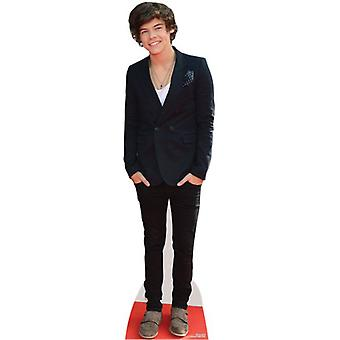 Harry stiler Lifesize papp åpning / Standee