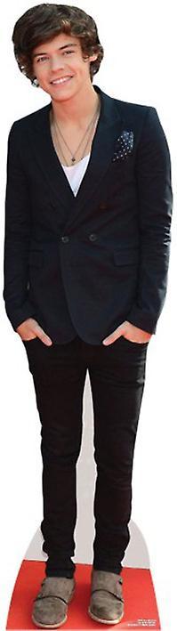 Harry Styles Lifesize kartong Cutout / Standee